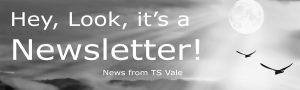 TS Vale Newsletter banner